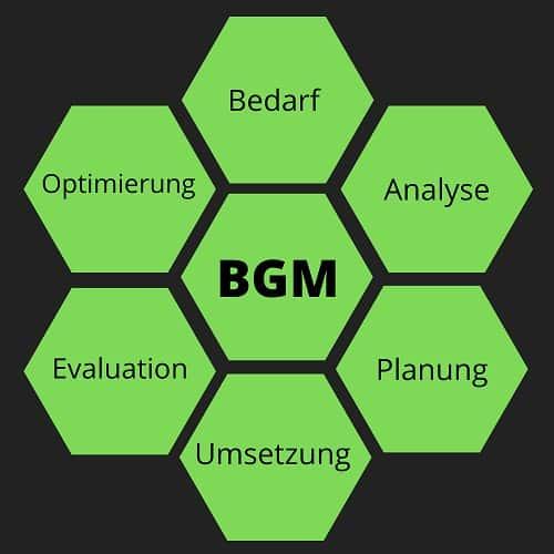 Einführung des Betrieblichen Gesundheitsmanagements - In 6 Schritten zum BGM