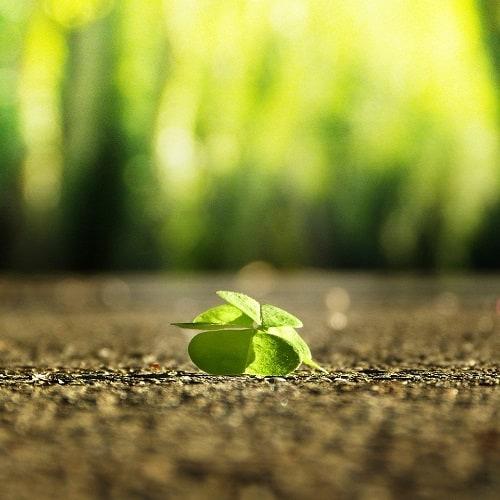 Optimismus - halb voll oder halb leer - Resilienz