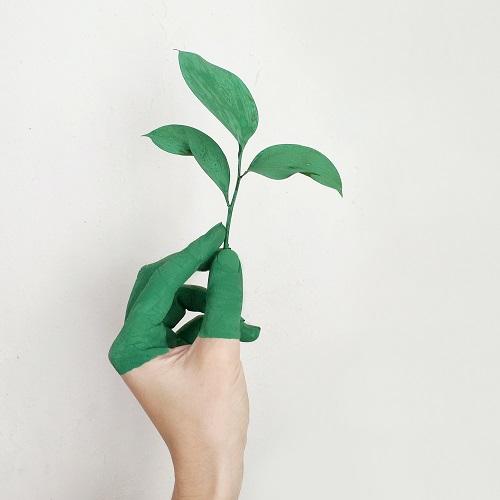 Nachhaltigkeit im BGM